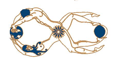 centro benessere yoga savasana roma